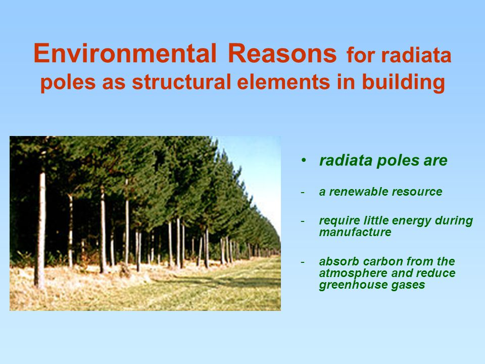 Environmental Reasons for radiata poles as structural elements in building radiata poles are -a renewable resource -require little energy during manufacture -absorb carbon from the atmosphere and reduce greenhouse gases