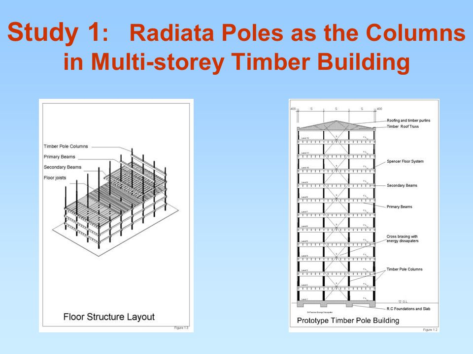 Study 1 : Radiata Poles as the Columns in Multi-storey Timber Building