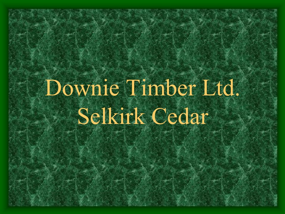 Downie Timber and its related company Selkirk Cedar are independent family owned woodlands, sawmill, and remanufacturing facilities located in Revelstoke, a small community in south eastern British Columbia