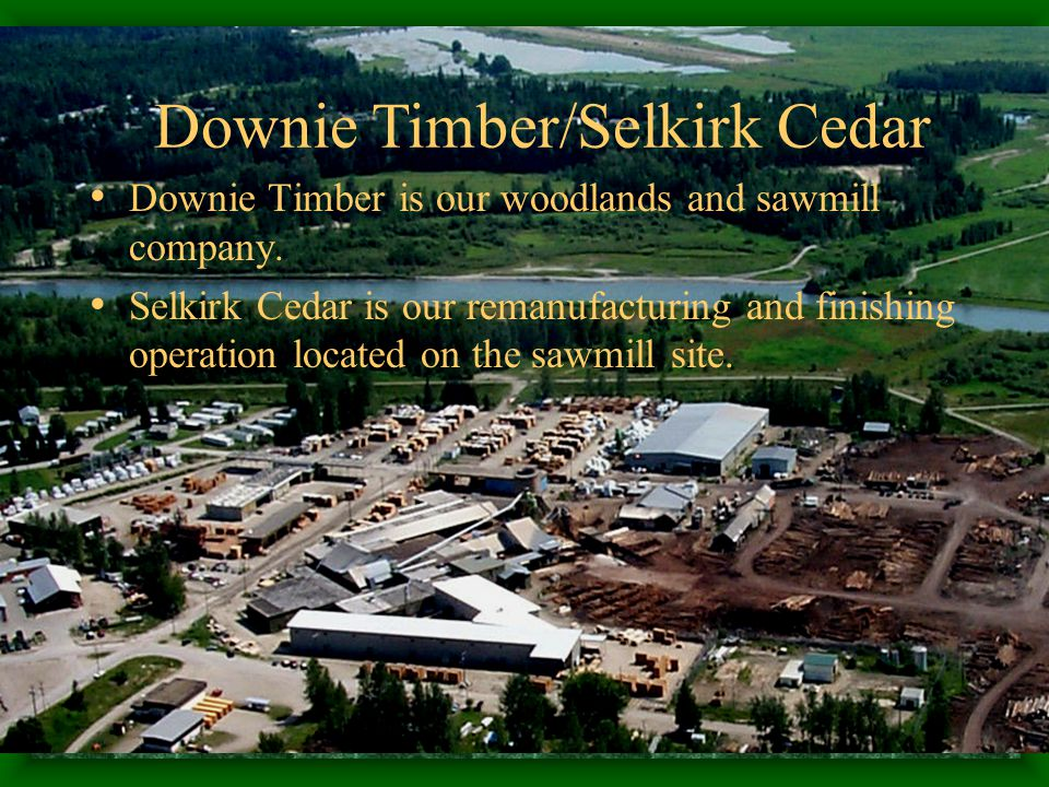 Downie Timber is our woodlands and sawmill company.