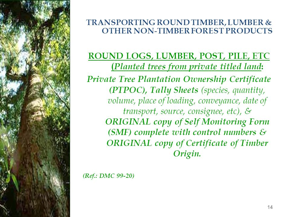 14 TRANSPORTING ROUND TIMBER, LUMBER & OTHER NON-TIMBER FOREST PRODUCTS ROUND LOGS, LUMBER, POST, PILE, ETC ( Planted trees from private titled land :