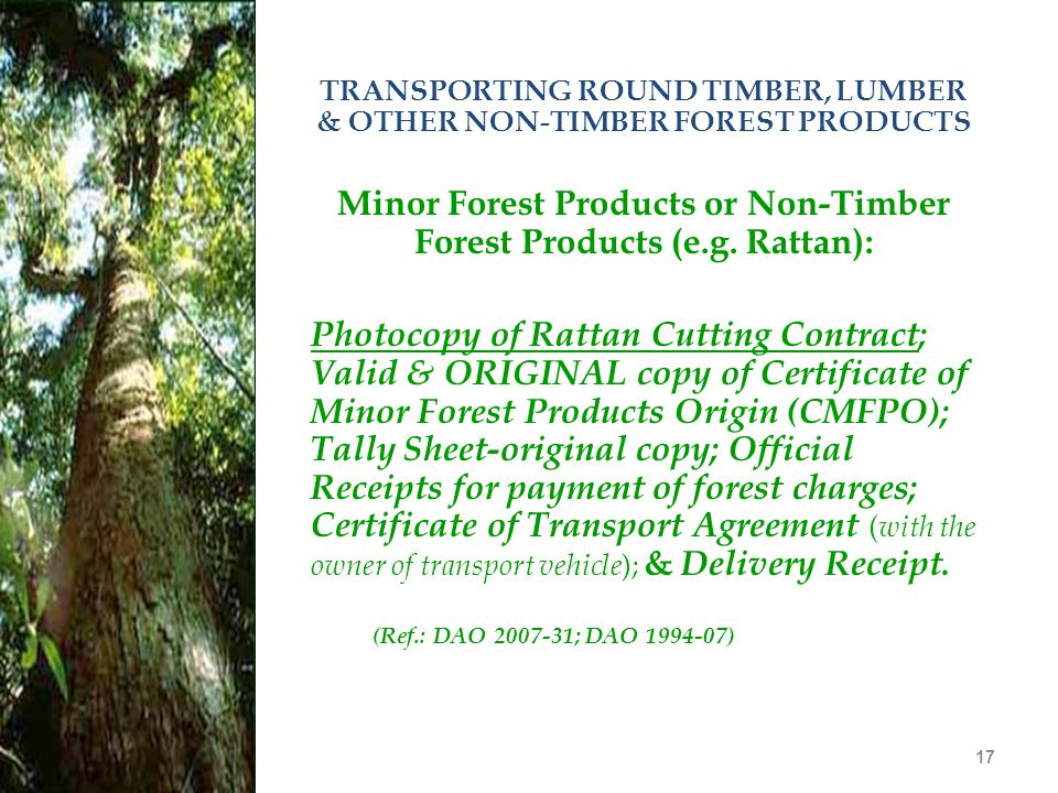 17 TRANSPORTING ROUND TIMBER, LUMBER & OTHER NON-TIMBER FOREST PRODUCTS Minor Forest Products or Non-Timber Forest Products (e.g. Rattan): Photocopy o