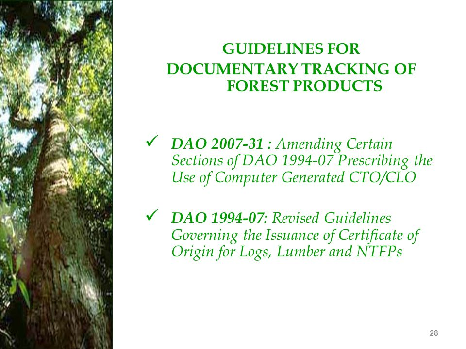 28 GUIDELINES FOR DOCUMENTARY TRACKING OF FOREST PRODUCTS DAO 2007-31 : Amending Certain Sections of DAO 1994-07 Prescribing the Use of Computer Gener