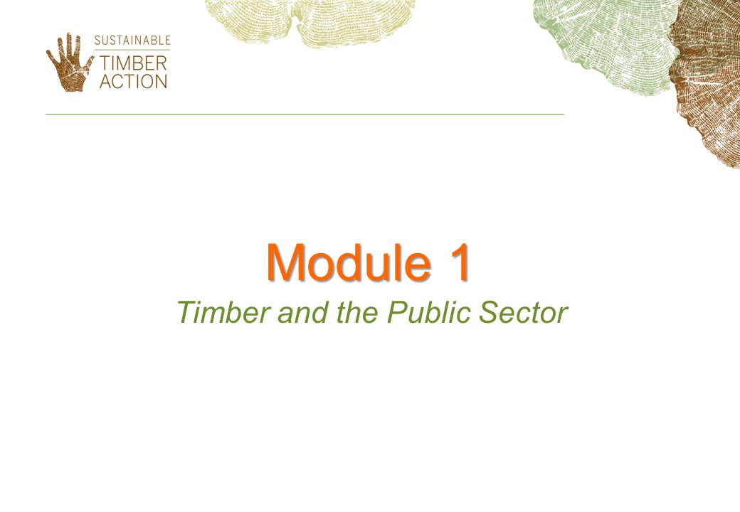 Module 1 Timber and the Public Sector