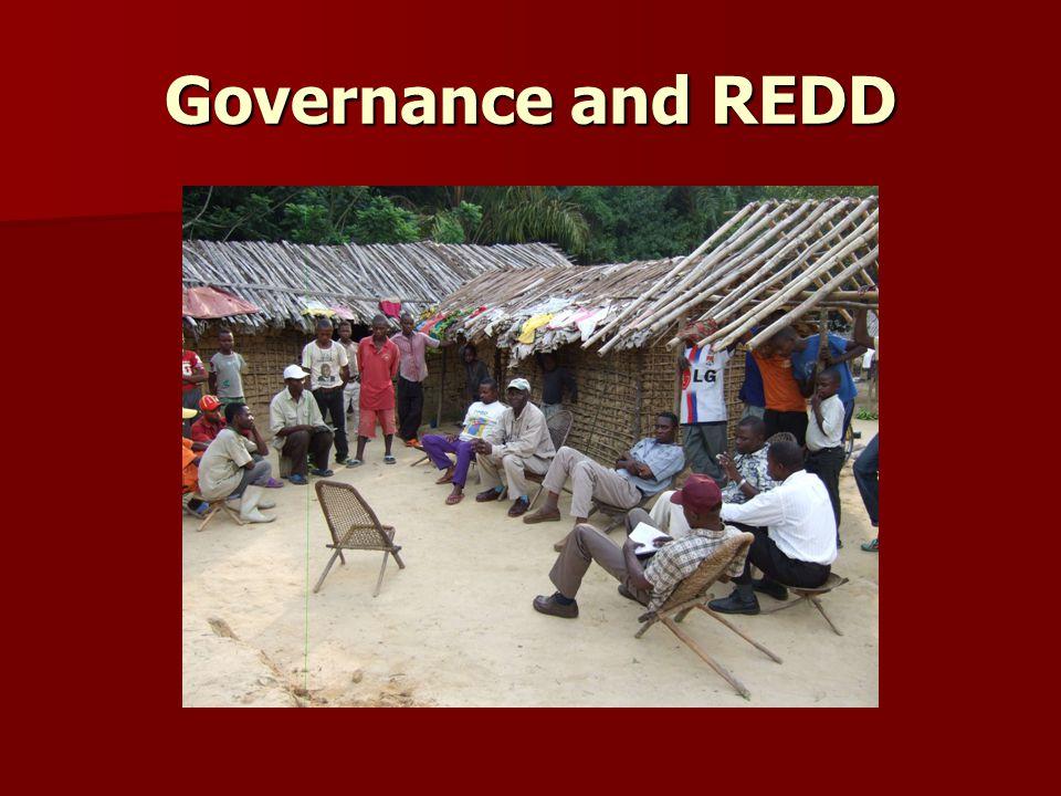 Governance and REDD