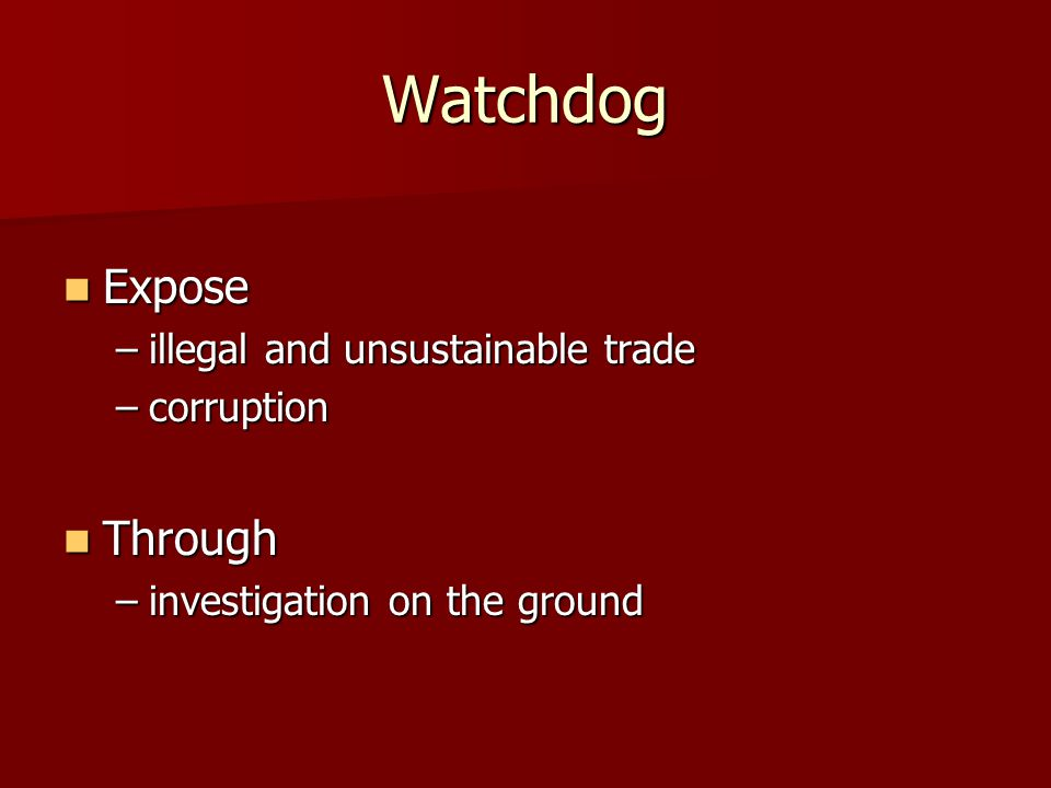 Watchdog Expose Expose –illegal and unsustainable trade –corruption Through Through –investigation on the ground
