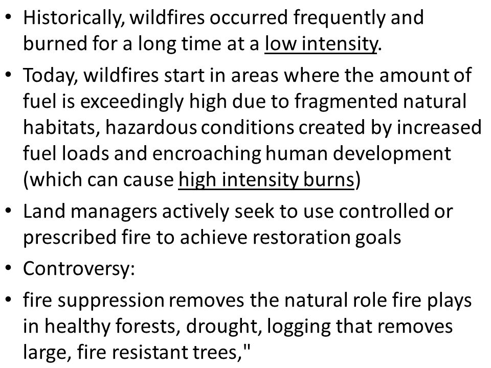 Historically, wildfires occurred frequently and burned for a long time at a low intensity.