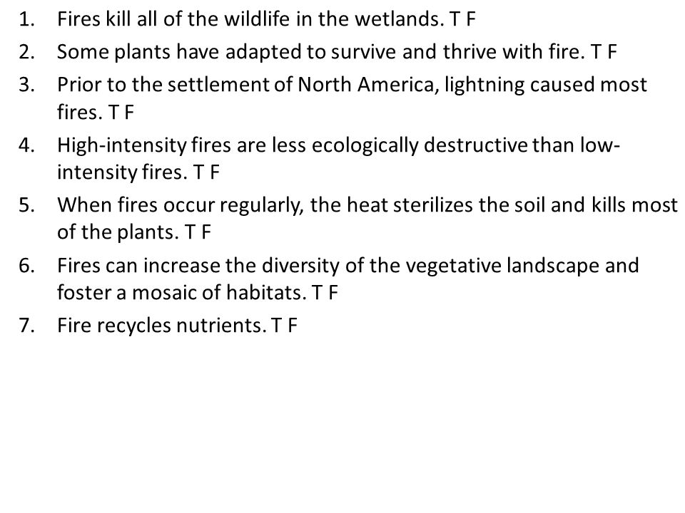 1.Fires kill all of the wildlife in the wetlands.