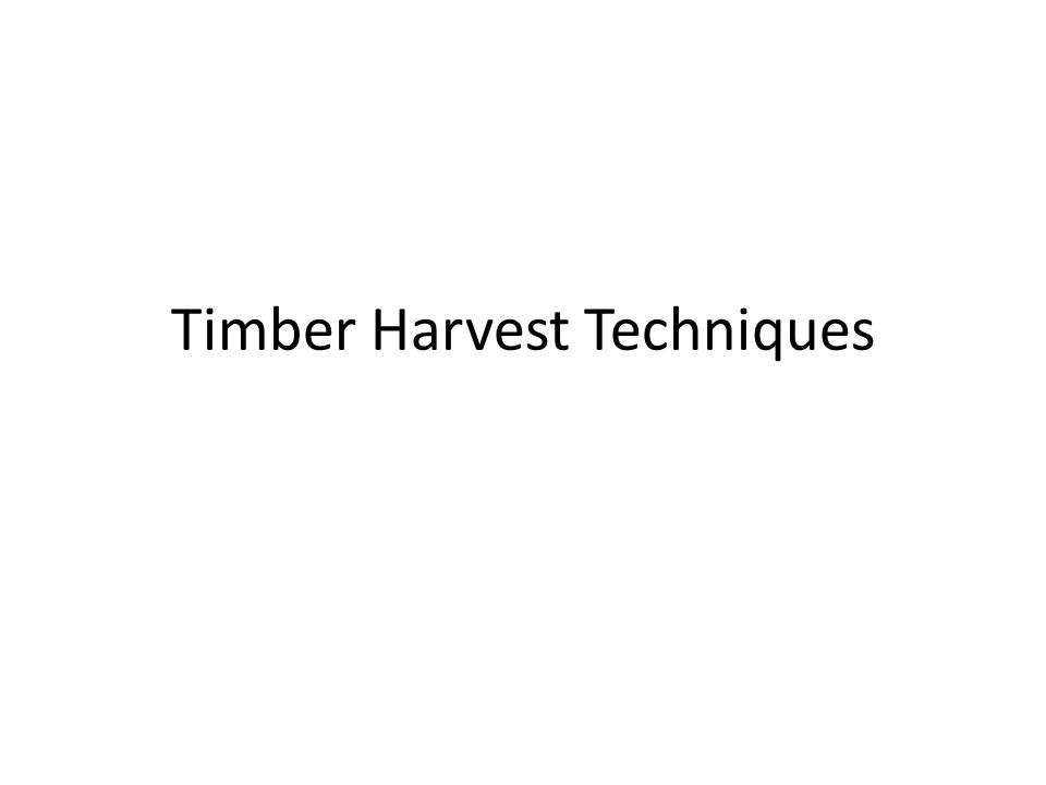 Timber Harvest Techniques