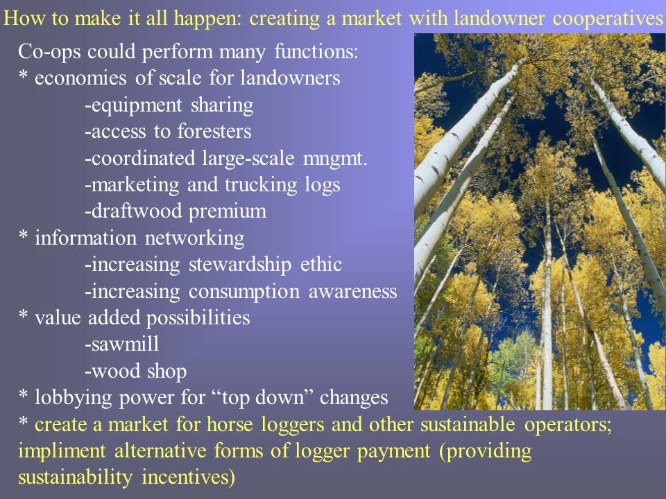 How to make it all happen: creating a market with landowner cooperatives Co-ops could perform many functions: * economies of scale for landowners -equipment sharing -access to foresters -coordinated large-scale mngmt.