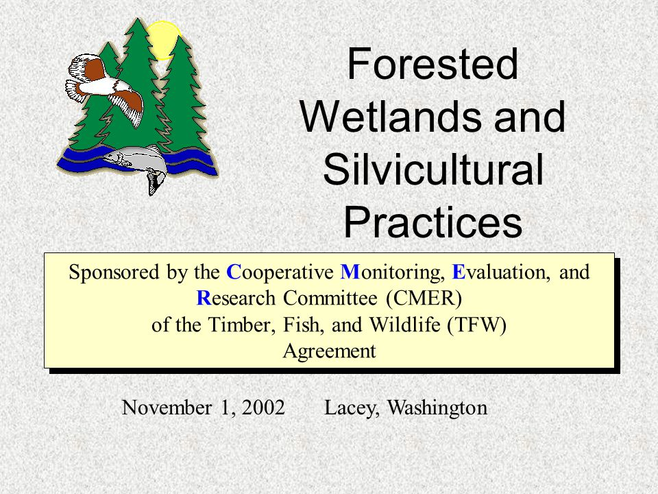 History of Washington State Forest Practices Rules 1946: Reforestation required, Forest Practices Board formed 1976: Broad package of Forest Practice Rules WAC 222 1988: TFW rule package and formation of CMER 1992: Wetland rules included 2001: Rule revision under Forests & Fish report