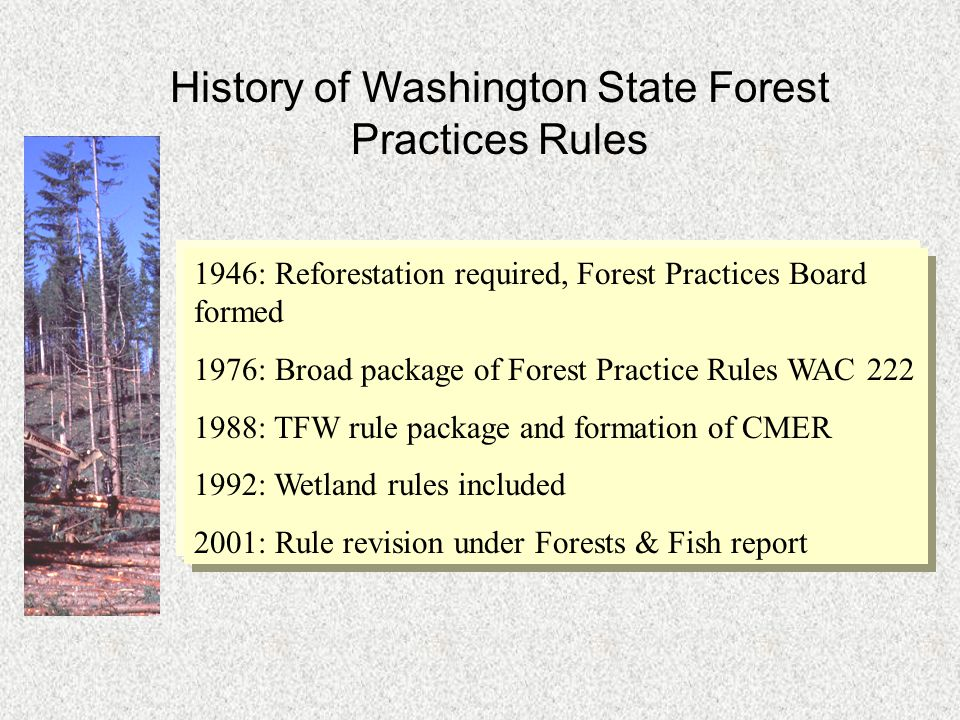 History of Washington State Forest Practices Rules 1946: Reforestation required, Forest Practices Board formed 1976: Broad package of Forest Practice