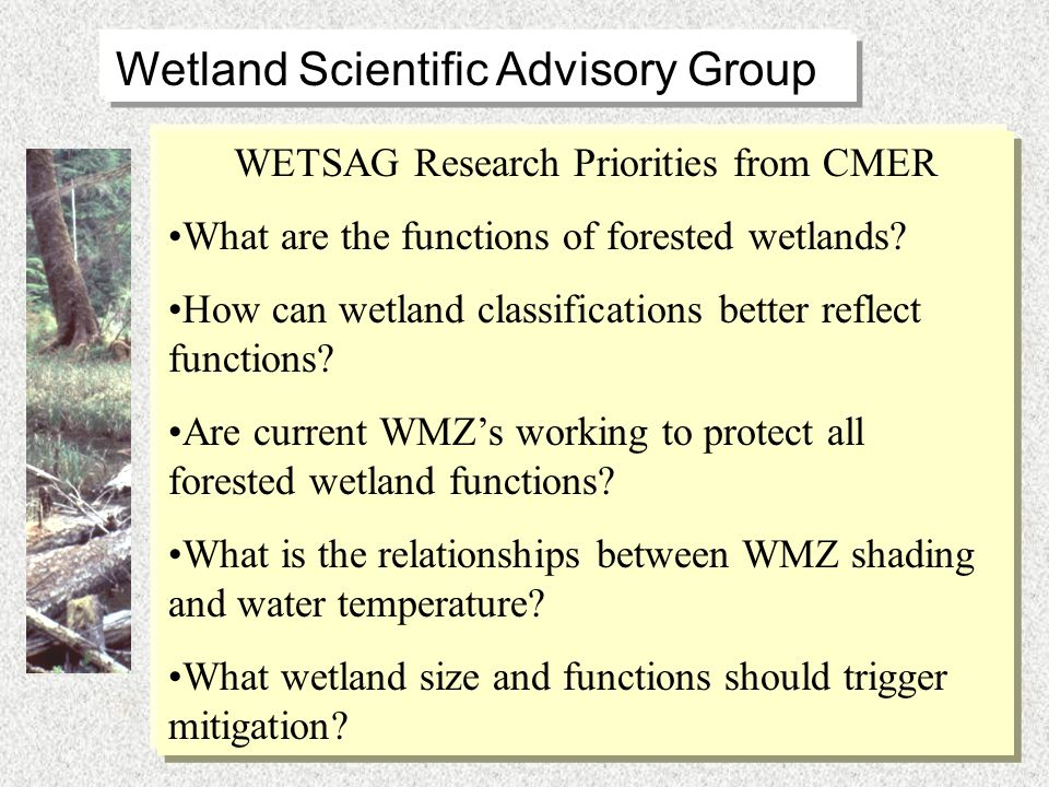 Adaptive management challenges of forested wetlands and silvicultural practices Go where the truth leads us .