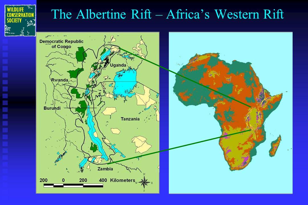 The Albertine Rift – Africa's Western Rift