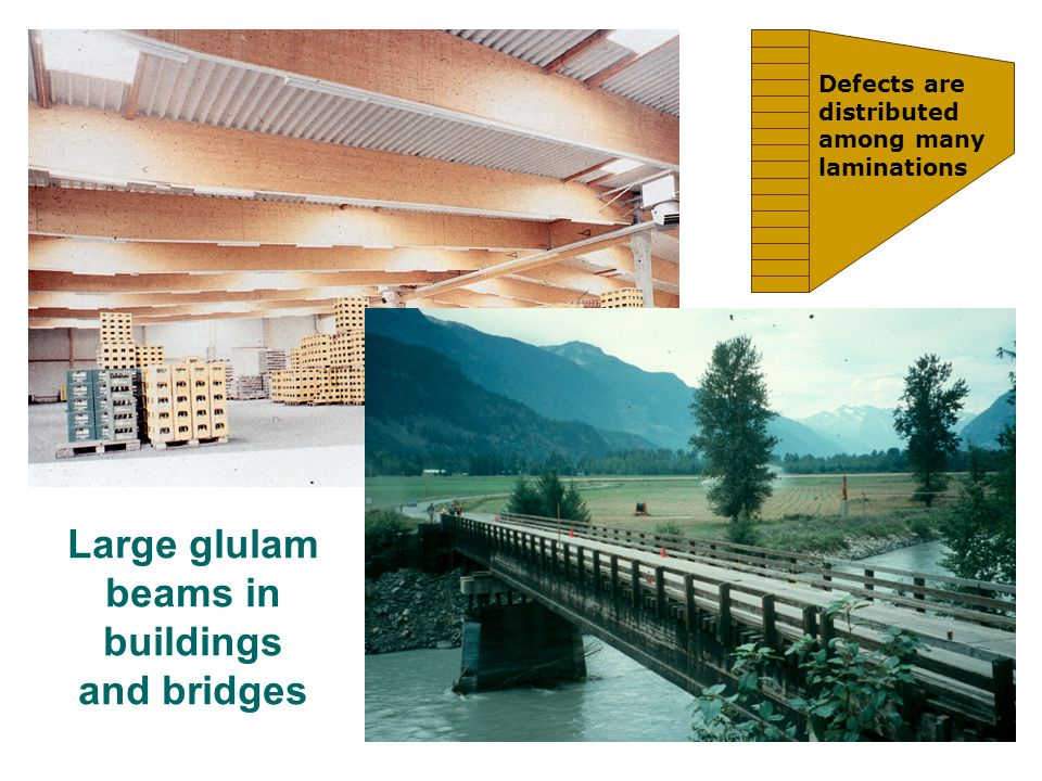 Large glulam beams in buildings and bridges Defects are distributed among many laminations