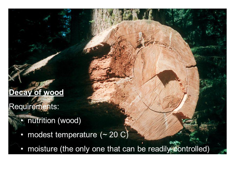 Design values for Douglas fir glulam (MPa)