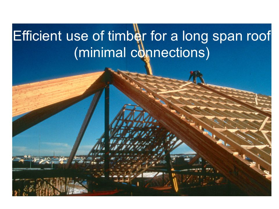Efficient use of timber for a long span roof (minimal connections)