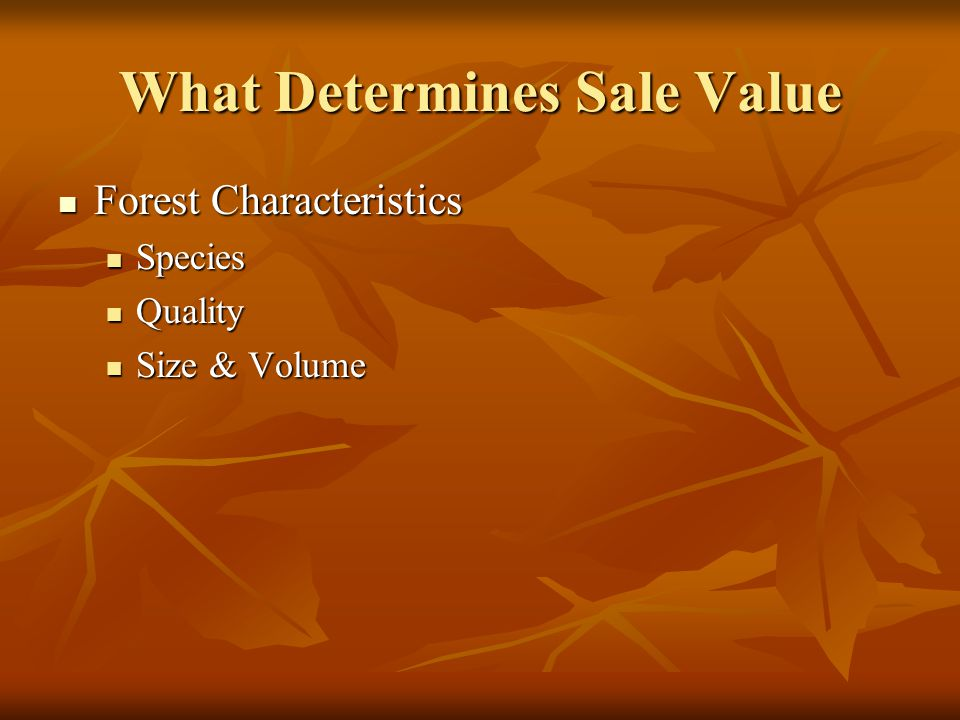 What Determines Sale Value Forest Characteristics Forest Characteristics Location & Topography Location & Topography Logging Conditions (Steep vs Flat) Logging Conditions (Steep vs Flat) Access & Yarding Access & Yarding Proximity to Markets Proximity to Markets County Restrictions County Restrictions