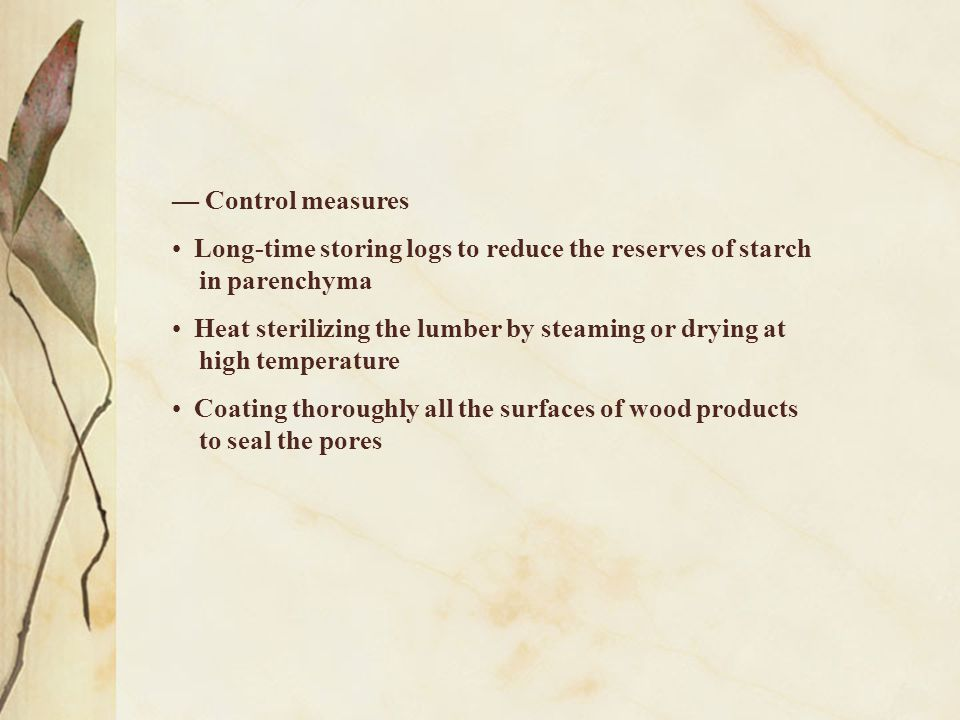 — Control measures Long-time storing logs to reduce the reserves of starch in parenchyma Heat sterilizing the lumber by steaming or drying at high tem