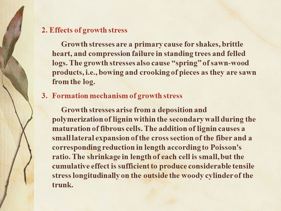 2. Effects of growth stress Growth stresses are a primary cause for shakes, brittle heart, and compression failure in standing trees and felled logs.