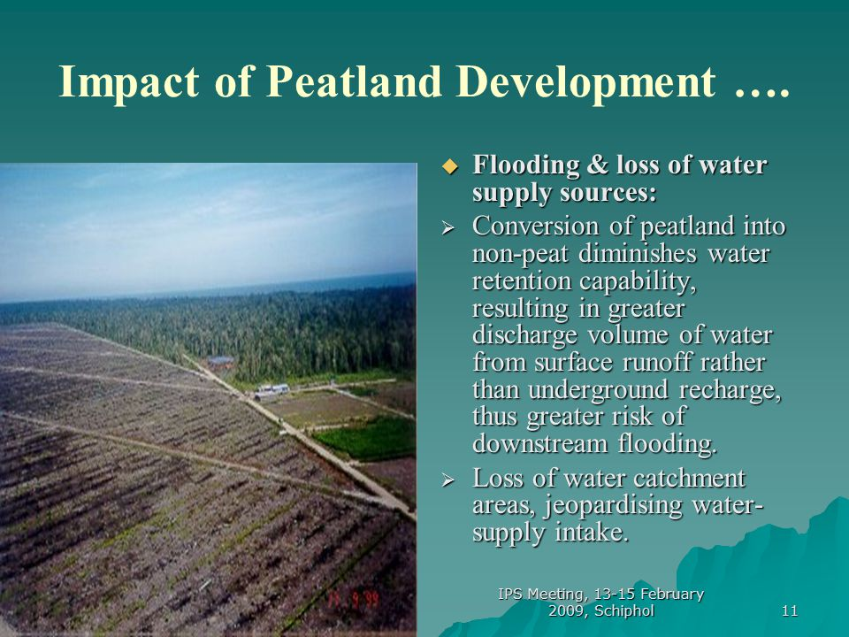 11 Impact of Peatland Development ….