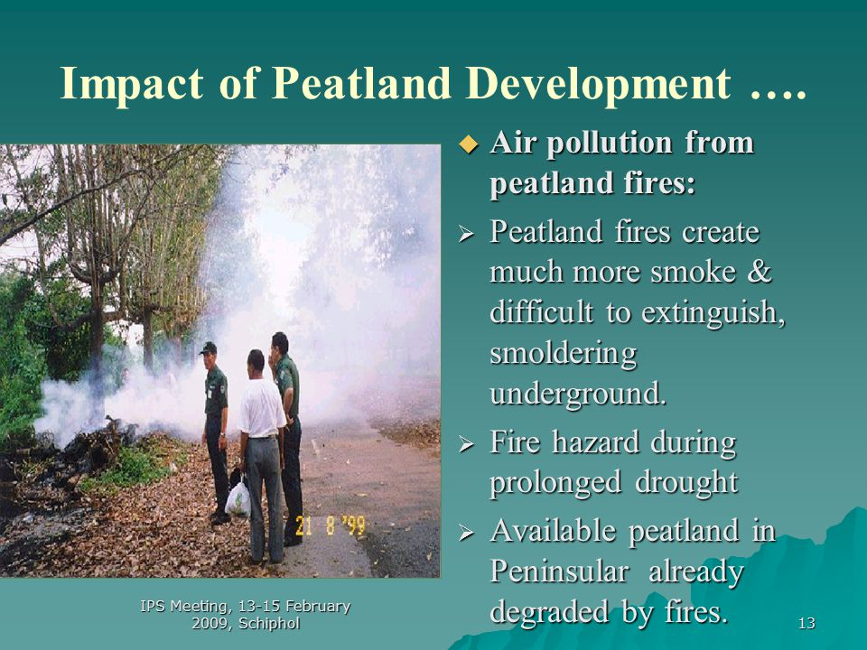 13 Impact of Peatland Development ….