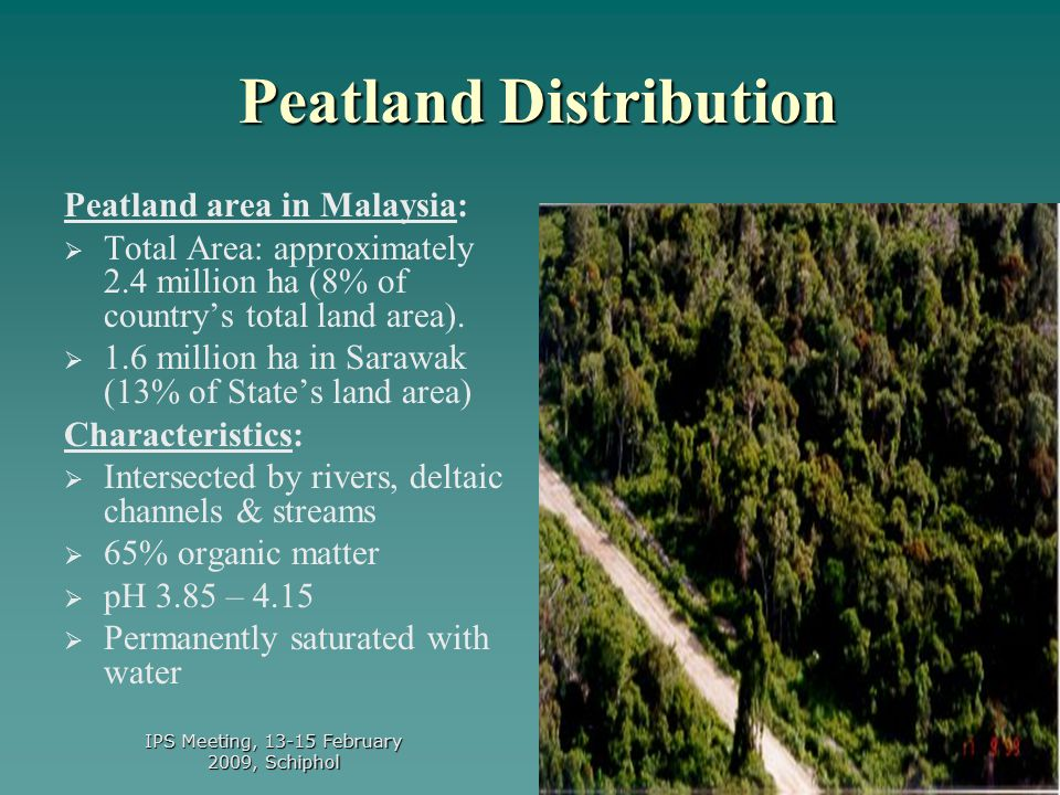 3 Land area - 328,750 km 2 Malaysia - 2.4 million ha Peninsular - 0.7 million ha Sarawak - 1.6 million ha Sabah - 0.1 million ha