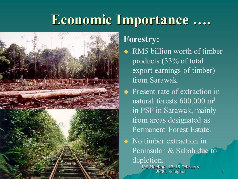 15 Impact of Peatland Development ….
