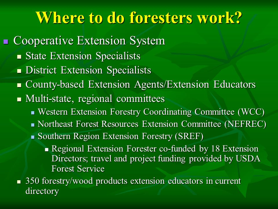 Where to do foresters work.