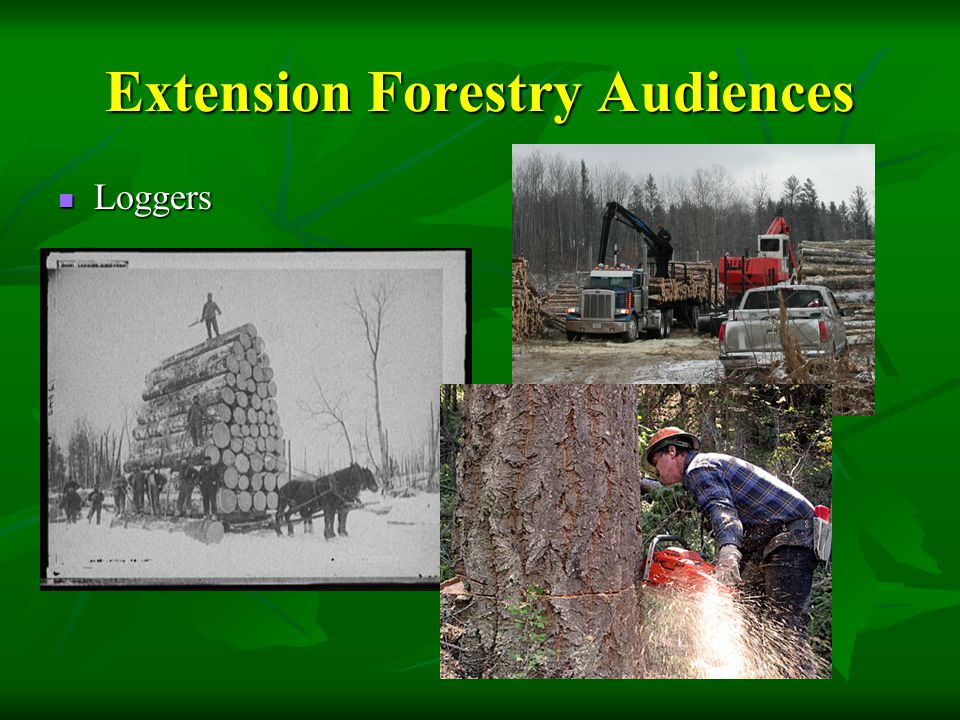 Extension Forestry Audiences Loggers Loggers