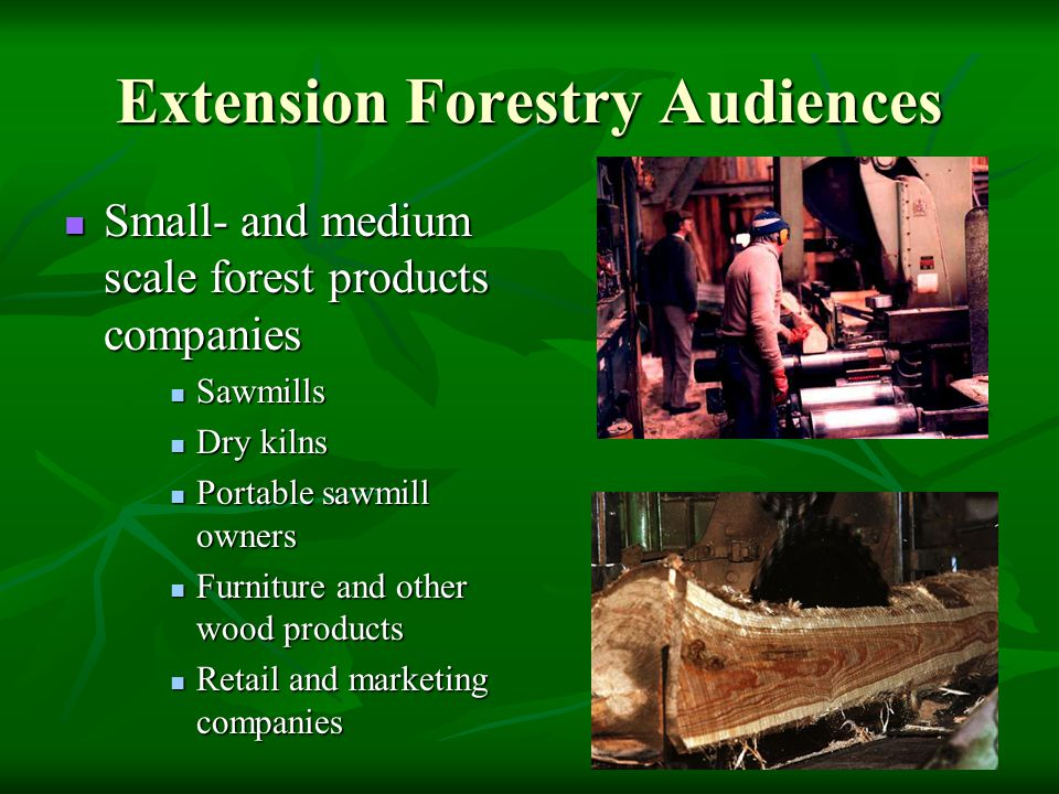 Extension Forestry Audiences Small- and medium scale forest products companies Small- and medium scale forest products companies Sawmills Sawmills Dry kilns Dry kilns Portable sawmill owners Portable sawmill owners Furniture and other wood products Furniture and other wood products Retail and marketing companies Retail and marketing companies