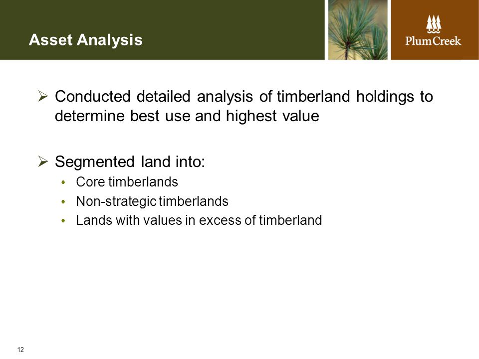 12 Asset Analysis  Conducted detailed analysis of timberland holdings to determine best use and highest value  Segmented land into: Core timberlands Non-strategic timberlands Lands with values in excess of timberland