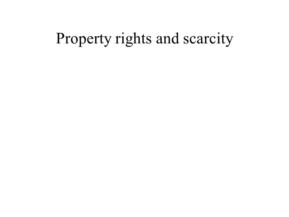 Property rights and scarcity