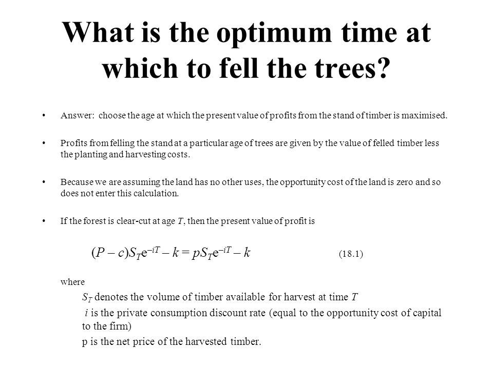 What is the optimum time at which to fell the trees.