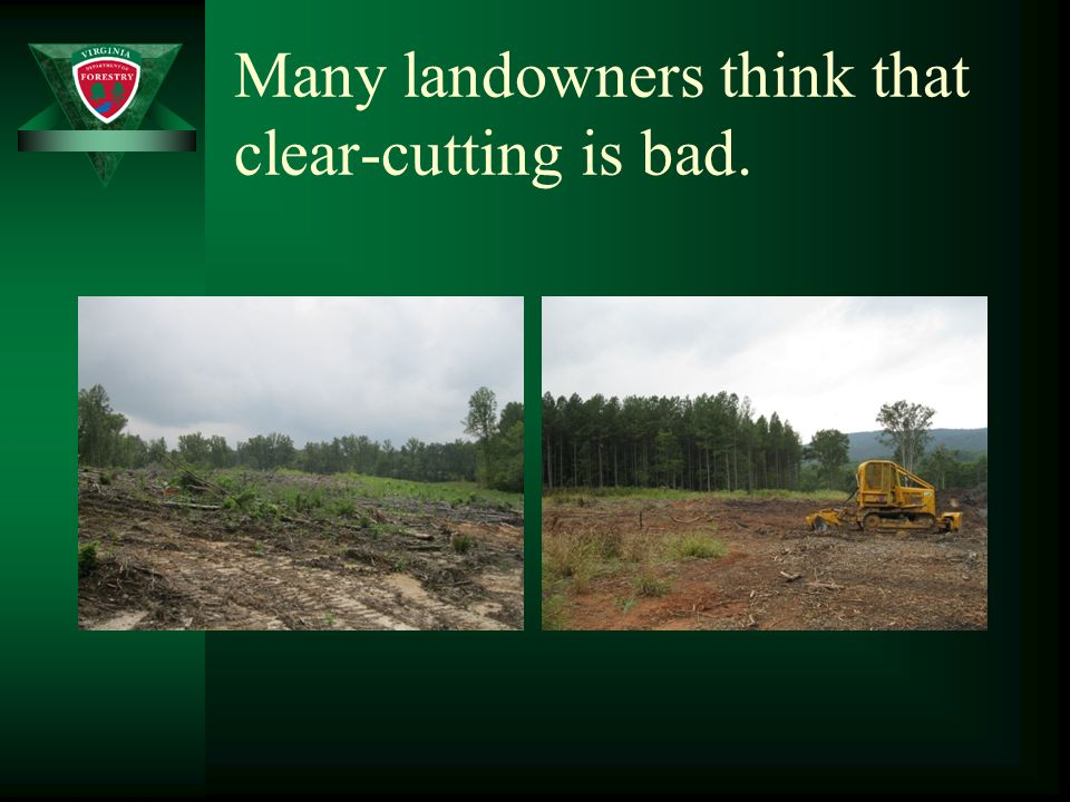 Many landowners think that clear-cutting is bad.