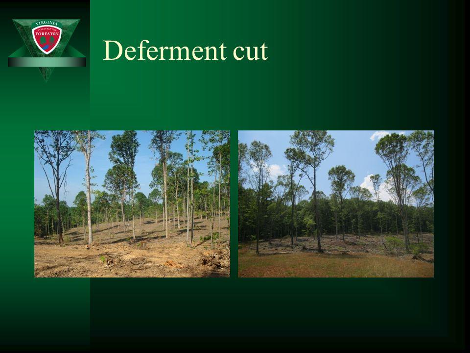 Deferment cut