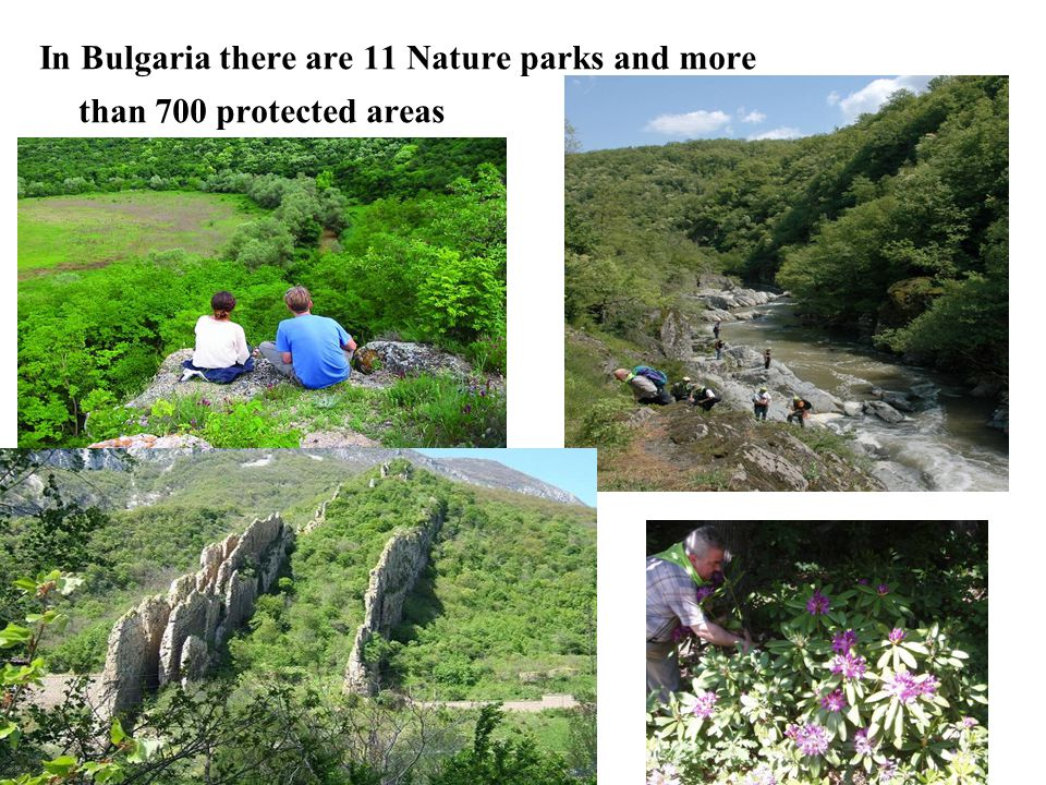 In Bulgaria there are 11 Nature parks and more than 700 protected areas