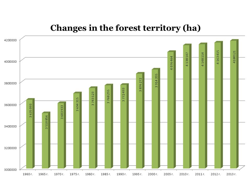 Changes in the forest territory (ha)