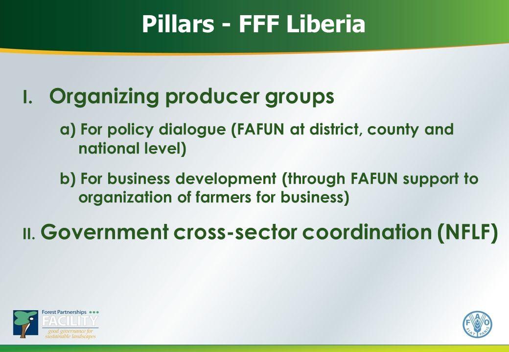 Pillars - FFF Liberia I.