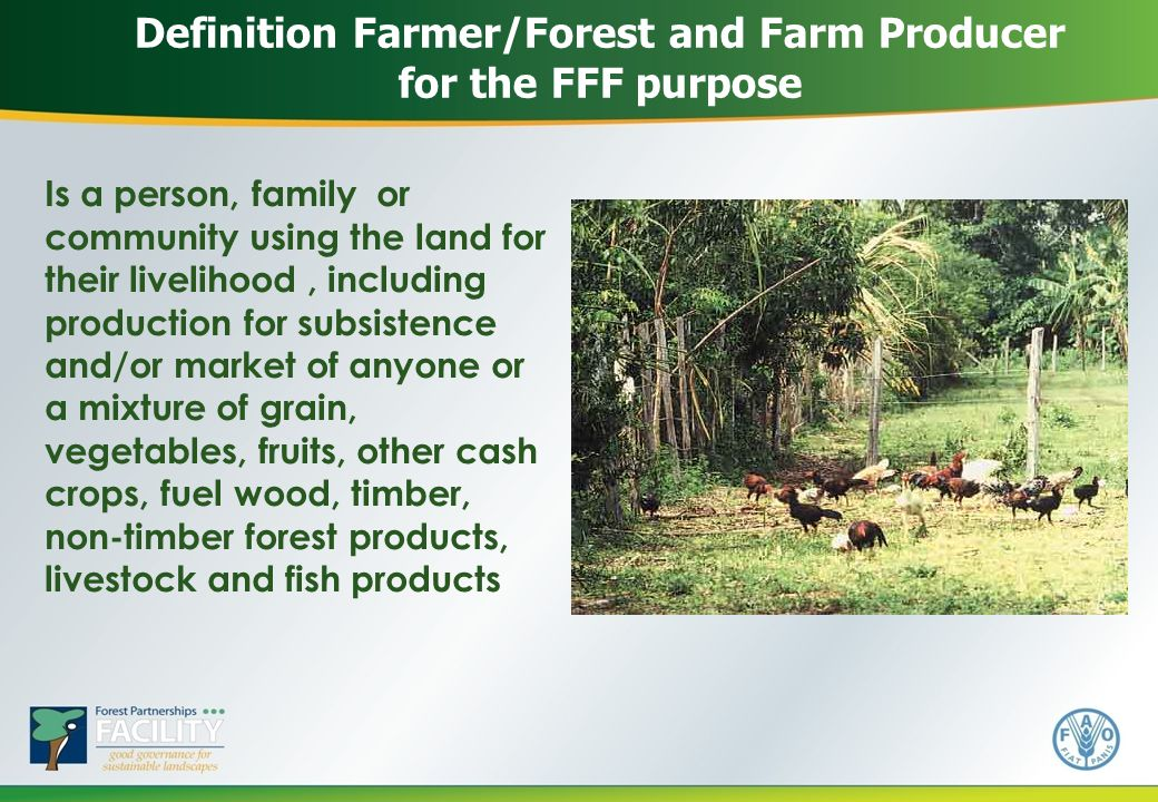 Definition Farmer/Forest and Farm Producer for the FFF purpose Is a person, family or community using the land for their livelihood, including production for subsistence and/or market of anyone or a mixture of grain, vegetables, fruits, other cash crops, fuel wood, timber, non-timber forest products, livestock and fish products