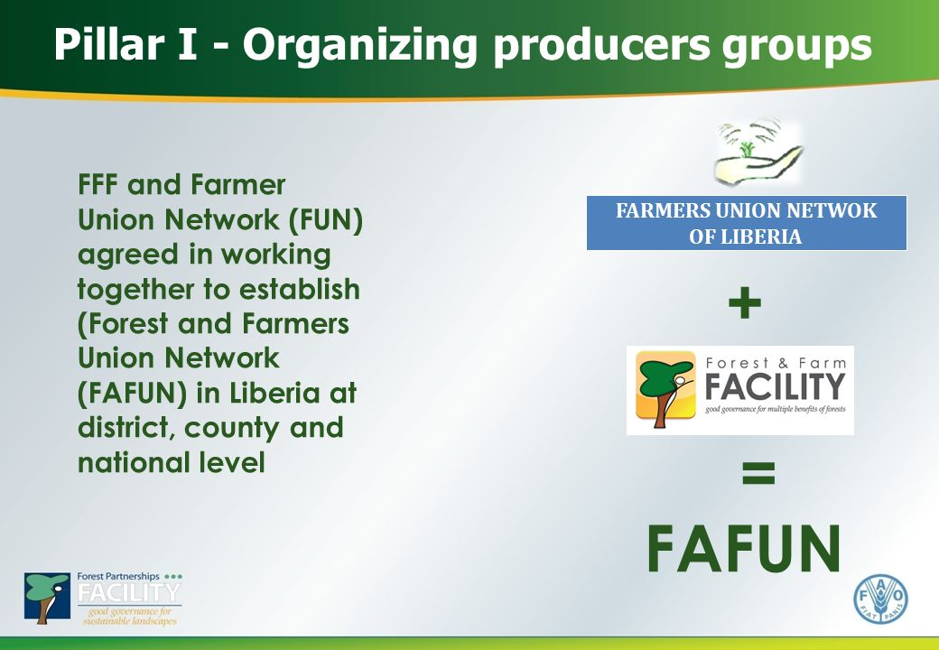 Pillar I - Organizing producers groups FFF and Farmer Union Network (FUN) agreed in working together to establish (Forest and Farmers Union Network (FAFUN) in Liberia at district, county and national level FARMERS UNION NETWOK OF LIBERIA + FAFUN =