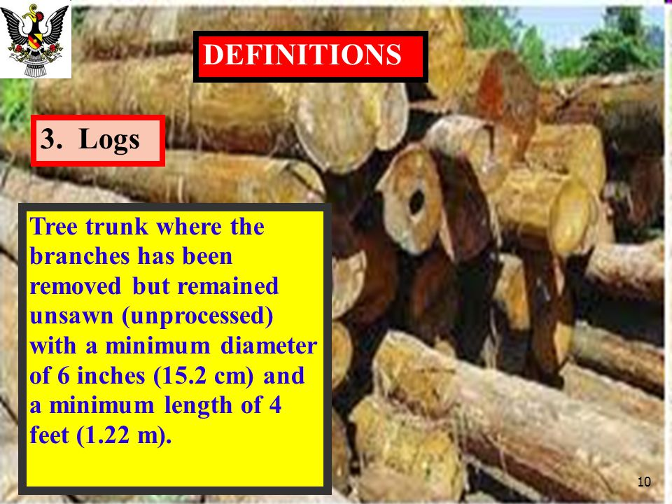 3. Logs DEFINITIONS Tree trunk where the branches has been removed but remained unsawn (unprocessed) with a minimum diameter of 6 inches (15.2 cm) and