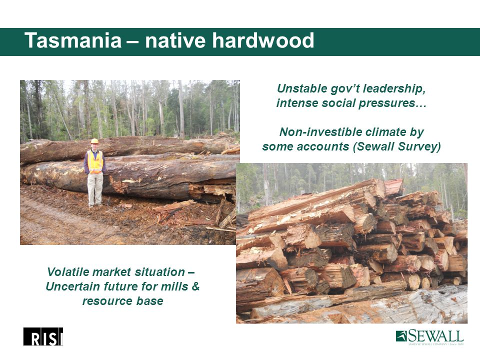 Tasmania – native hardwood Unstable gov't leadership, intense social pressures… Non-investible climate by some accounts (Sewall Survey) Volatile market situation – Uncertain future for mills & resource base