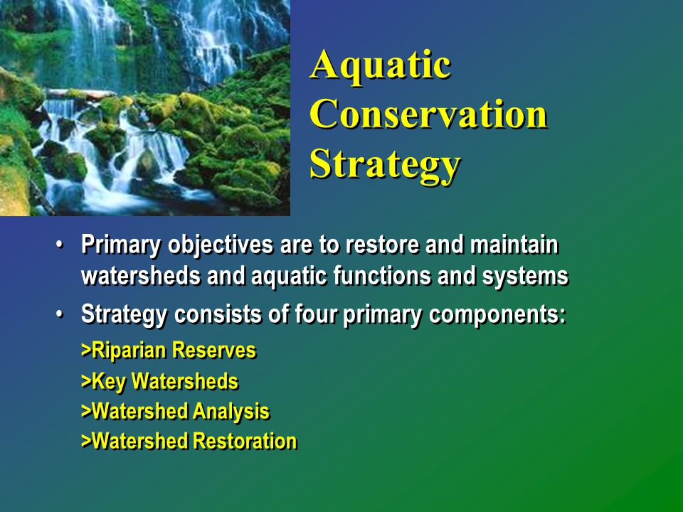 Aquatic Conservation Strategy Primary objectives are to restore and maintain watersheds and aquatic functions and systems Strategy consists of four primary components: >Riparian Reserves >Key Watersheds >Watershed Analysis >Watershed Restoration Primary objectives are to restore and maintain watersheds and aquatic functions and systems Strategy consists of four primary components: >Riparian Reserves >Key Watersheds >Watershed Analysis >Watershed Restoration