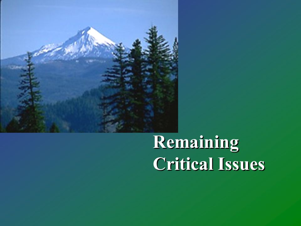 Remaining Critical Issues