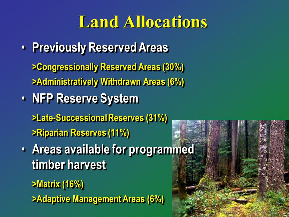 Land Allocations Previously Reserved Areas Previously Reserved Areas >Congressionally Reserved Areas (30%) >Administratively Withdrawn Areas (6%) NFP Reserve System NFP Reserve System >Late-Successional Reserves (31%) >Riparian Reserves (11%) Areas available for programmed timber harvest Areas available for programmed timber harvest >Matrix (16%) >Adaptive Management Areas (6%) Previously Reserved Areas Previously Reserved Areas >Congressionally Reserved Areas (30%) >Administratively Withdrawn Areas (6%) NFP Reserve System NFP Reserve System >Late-Successional Reserves (31%) >Riparian Reserves (11%) Areas available for programmed timber harvest Areas available for programmed timber harvest >Matrix (16%) >Adaptive Management Areas (6%)