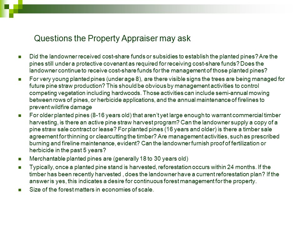 Questions the Property Appraiser may ask Did the landowner received cost-share funds or subsidies to establish the planted pines.