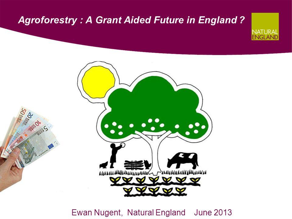 Fruit / Nut Tree System ~ Income Foregone ArableHorticultureDairy Non- organic OrganicNon- organic OrganicNon- organic Organic - £489- £564- £730- £817- £707- £712 ArableHorticultureDairy Non- organic OrganicNon- organic OrganicNon- organic Organic + £574+ £270+ £333+ £18+ £356+ £123 Establishment (per Ha / year for 5 years) Maintenance ( per Ha / year)