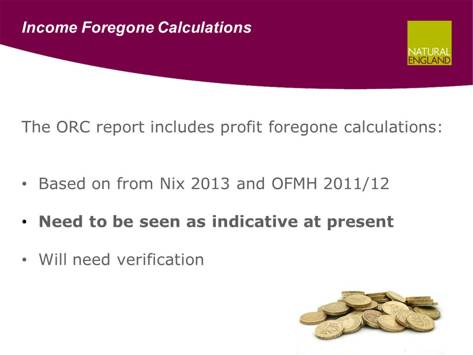 Income Foregone Calculations The ORC report includes profit foregone calculations: Based on from Nix 2013 and OFMH 2011/12 Need to be seen as indicative at present Will need verification