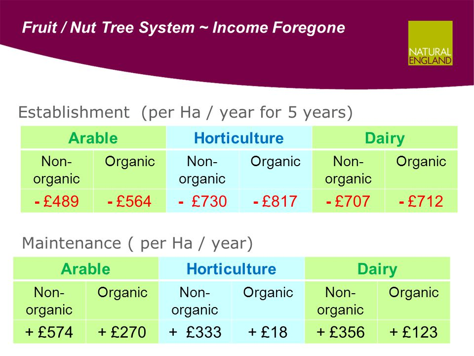 Fruit / Nut Tree System ~ Income Foregone ArableHorticultureDairy Non- organic OrganicNon- organic OrganicNon- organic Organic - £489- £564- £730- £817- £707- £712 ArableHorticultureDairy Non- organic OrganicNon- organic OrganicNon- organic Organic + £574+ £270+ £333+ £18+ £356+ £123 Establishment (per Ha / year for 5 years) Maintenance ( per Ha / year)